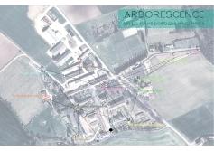 carte-arboresence1